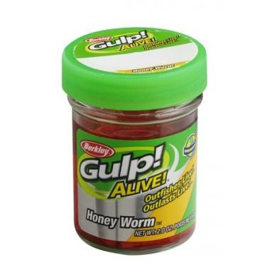 Gumy Gulp! Alive Angle Worm