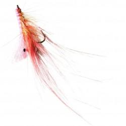 Mucha morska Pattergrisen